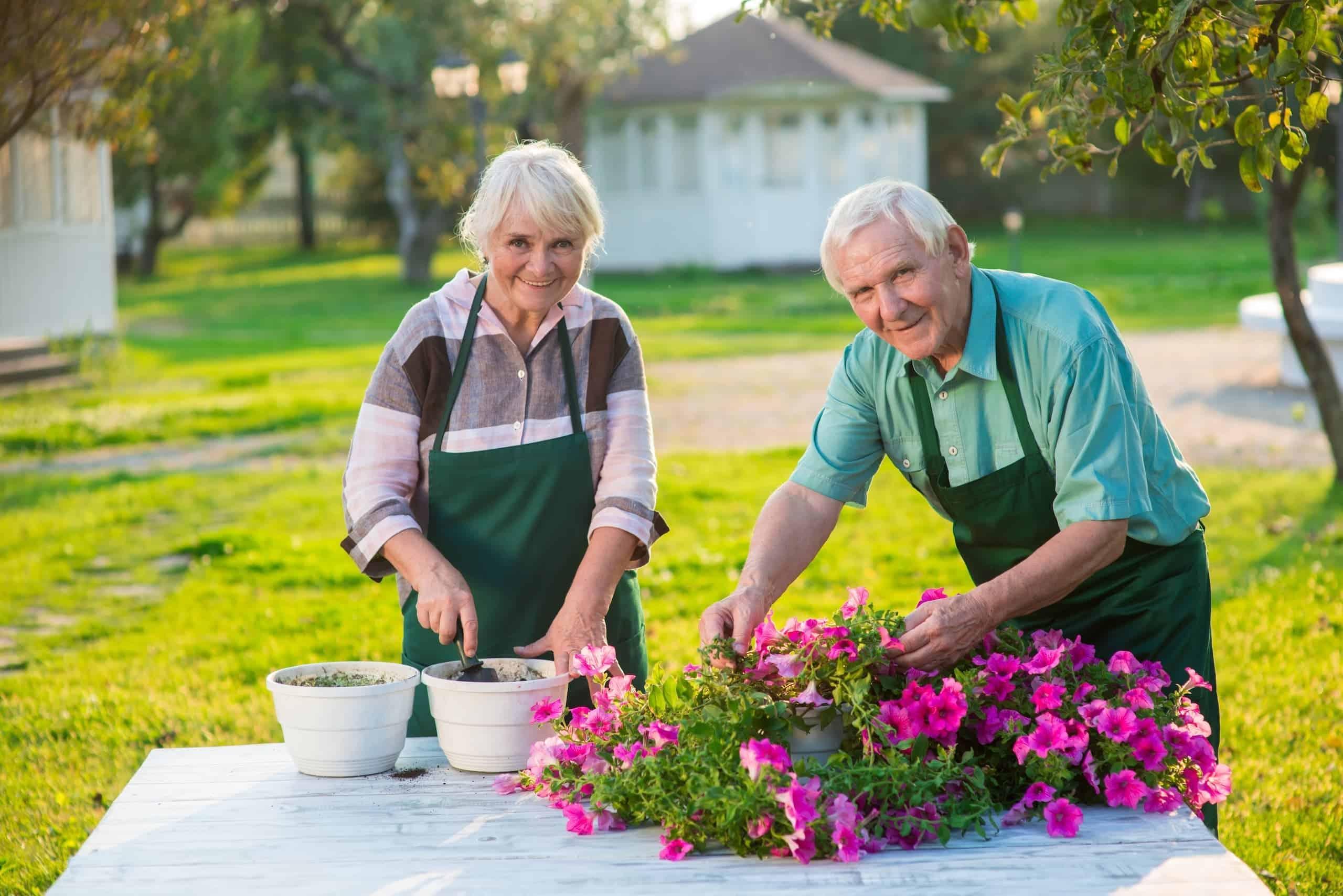 senior couple watering flowers